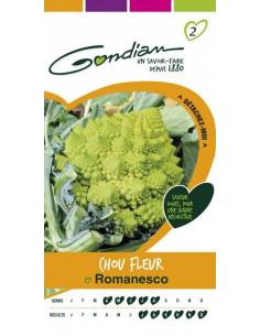 GONDIAN Chou Fleur Romanesco