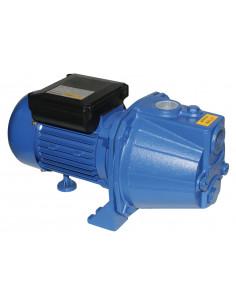 AITOPRO GT5510 Pompe à eau 800 W 45 L/min