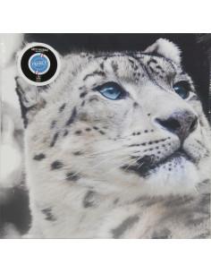 CEANOTHE Toile léopard blanc 45x65cm