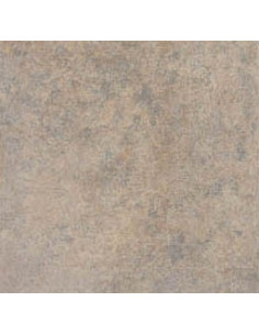 Carrelage 33x33 face barbade