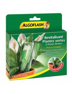 ALGOFLASH Revitalisant pour plante verte 5x30ml