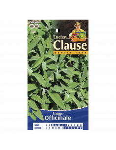 LUCIEN CLAUSE Sauge Officinale **