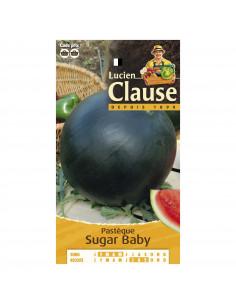 LUCIEN CLAUSE Pastèque Sugar Baby **
