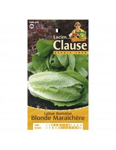 LUCIEN CLAUSE Laitue romaine blonde maraîchère *