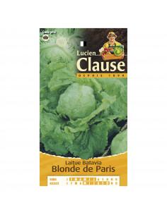 LUCIEN CLAUSE Laitue batavia blonde de Paris *