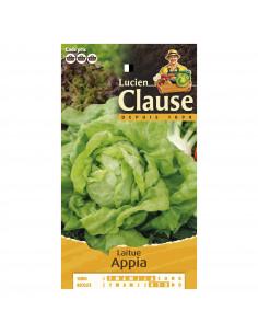 LUCIEN CLAUSE Laitue appia ***