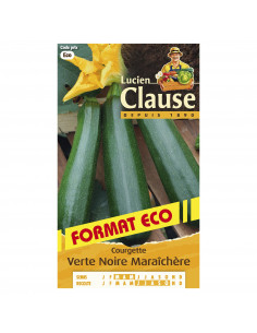 LUCIEN CLAUSE Courgette verte noire maraîchère eco