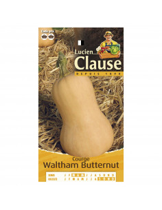 LUCIEN CLAUSE Courge waltham butternut **