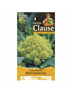 LUCIEN CLAUSE Chou brocoli romanesco ***