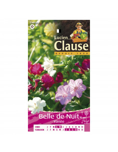 LUCIEN CLAUSE Belle de nuit mix*