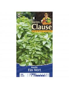 LUCIEN CLAUSE Basilic fin vert *