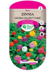 LES DOIGTS VERTS Zinnia Double Lilliput Varié