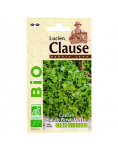 LUCIEN CLAUSE Laitue Salad Bowl Verte Bio **