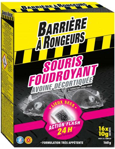 BARRIÈRE À RONGEURS Souris Foudroyant...