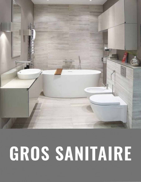 Gros sanitaire