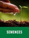 Semences