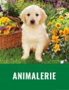 Animalerie