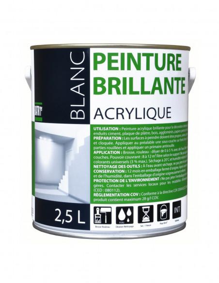Peinture finition acrylique brillant
