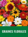 Graine florale